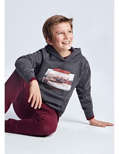 Pullover print fotografico - Fosil vig